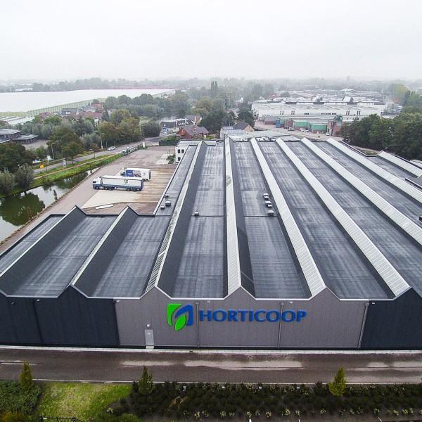 Horticoop (nu Van Iperen)